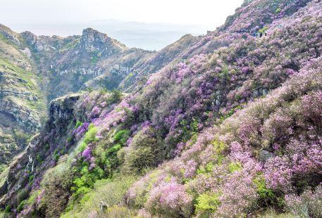 다헤이산(대흑산)