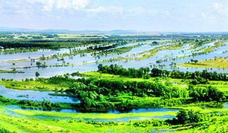 Qixing River Wetland National Nature Reserve