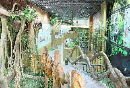 Wuyi Snake Garden