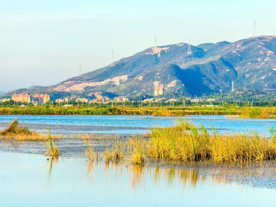 Xinhui Yinhuwan Wetland Park