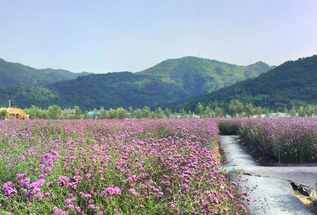 Tianfu Ecological Park