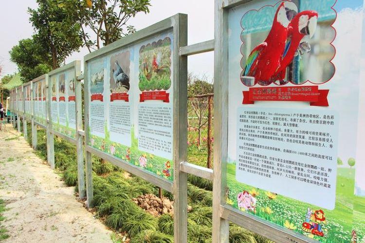 주룽 꽃밭 관광단지1