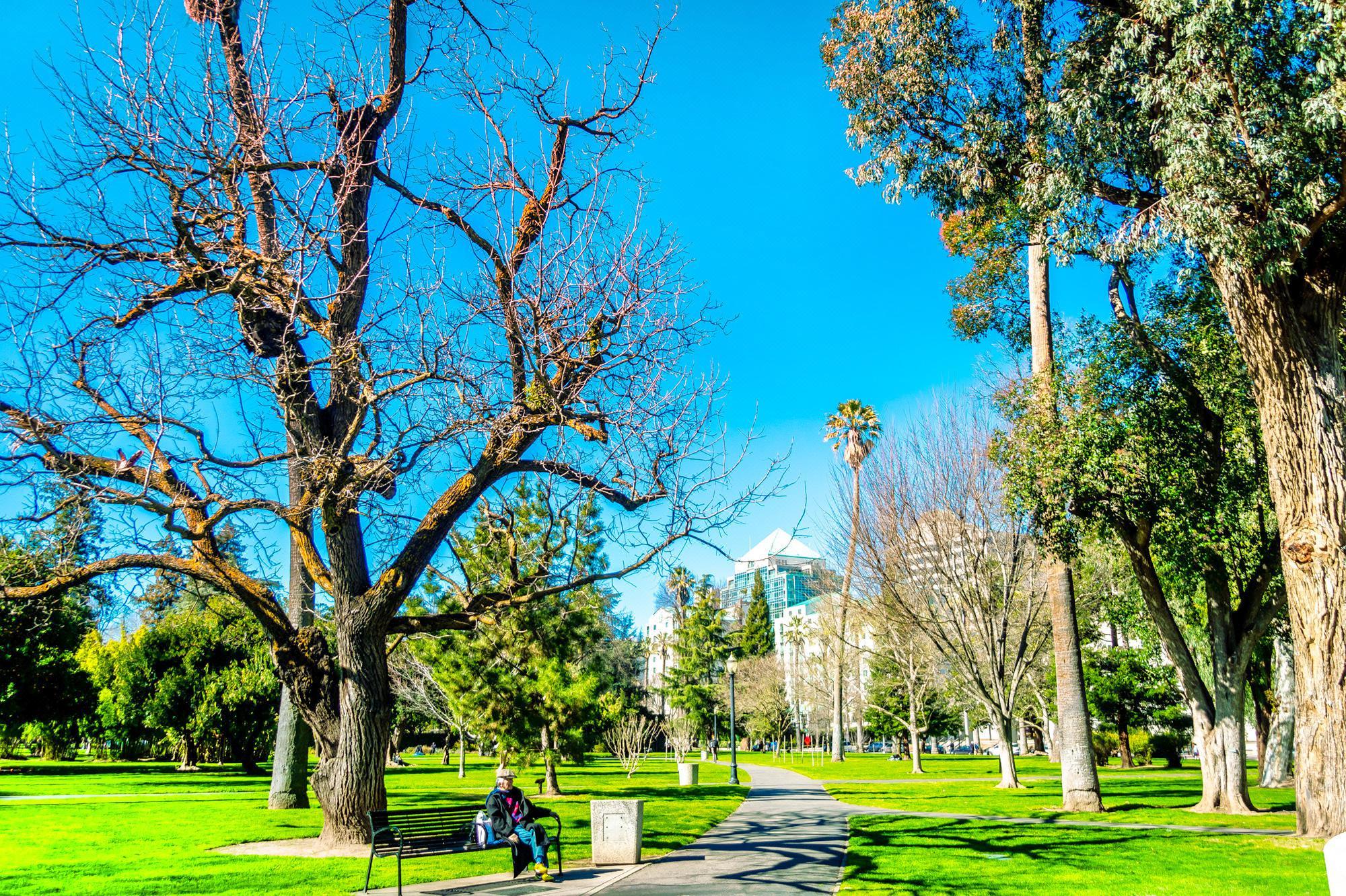 州政府公園
