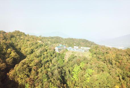 Jinguang Lake