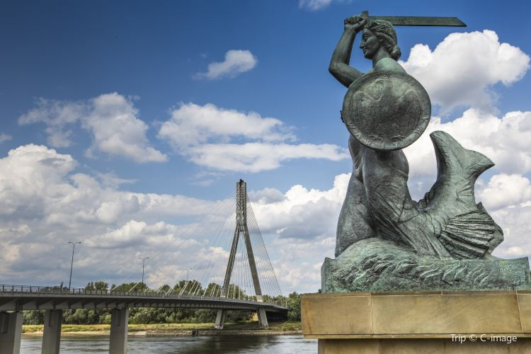 Mermaid of Warsaw1