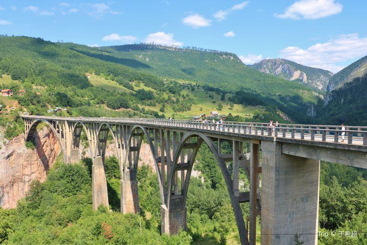 塔拉河大橋1