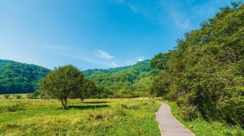 다쥬후 국가습지공원