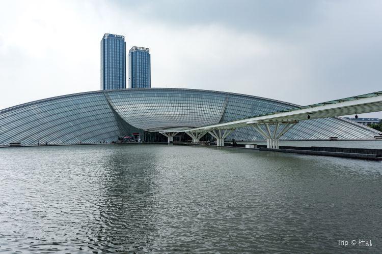 Tianjin Natural History Museum2