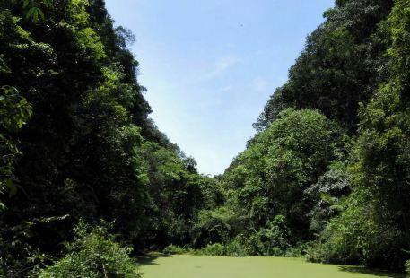 Suoluogu Scenic Area