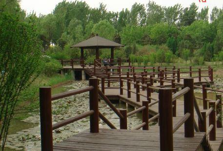 汾河濕地公園