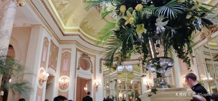 The Palm Court2