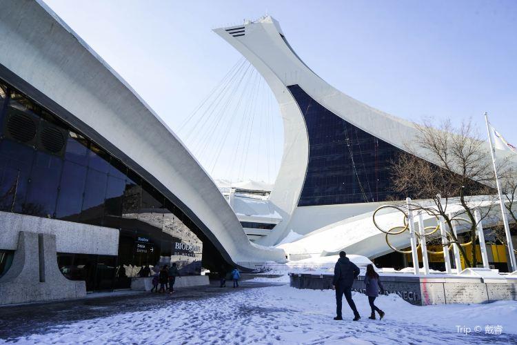 Biodome de Montreal1