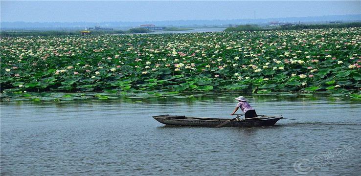 Jiaogang Lake National Wetland Park3