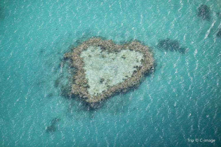 心形大堡礁1
