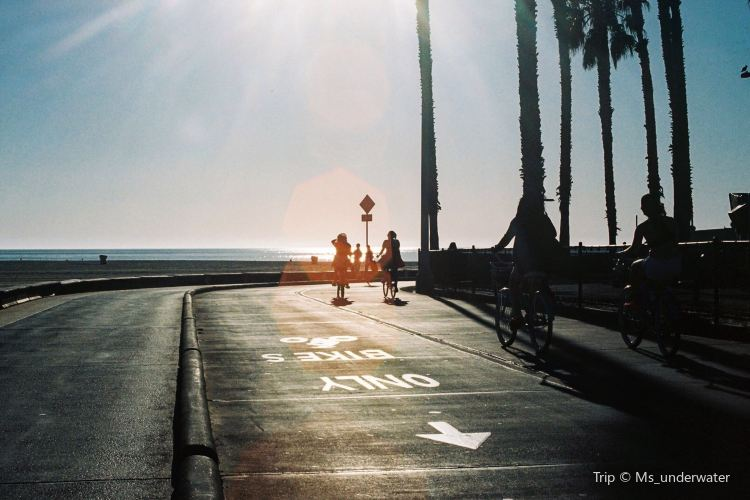 Venice Beach Boardwalk1