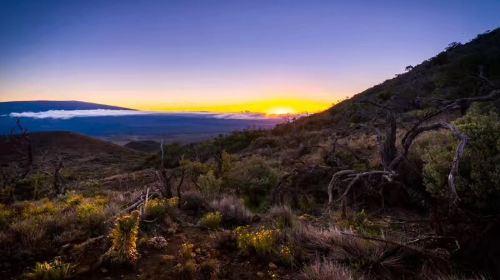 마우나케아 산