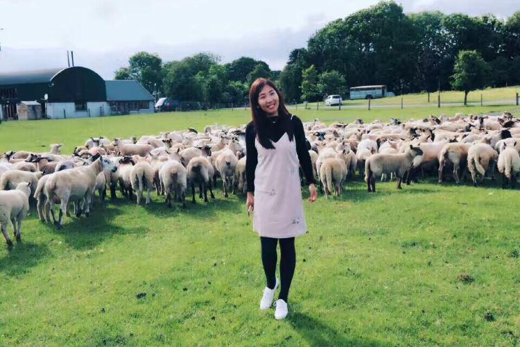 Causey Farm3