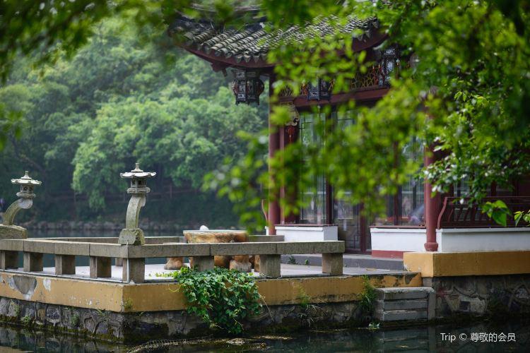 珍珠泉風景區4