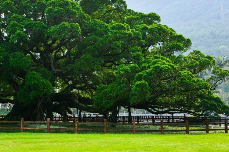 푸저우 국가삼림공원1