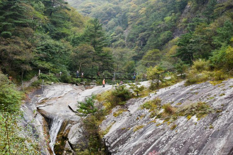 朱雀国家森林公園2