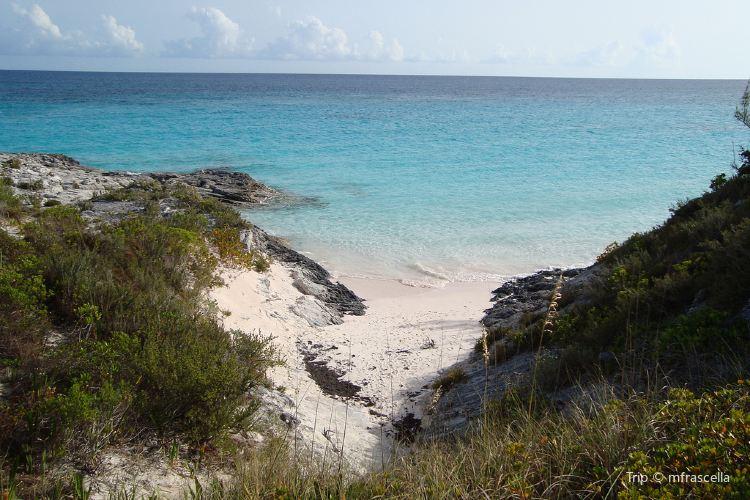 Blackbeard's Cay Day Trips1