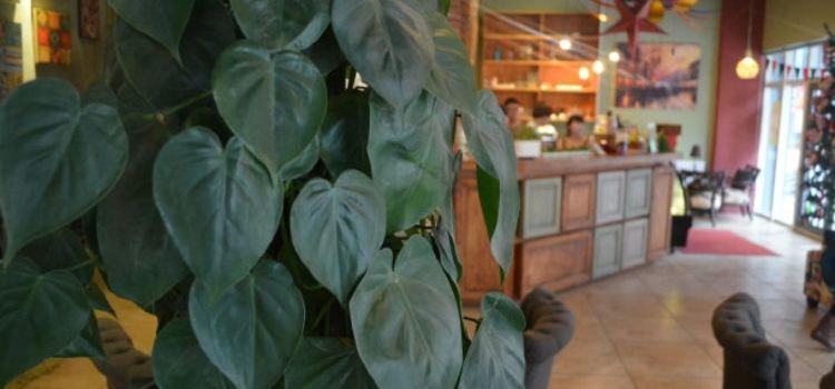 時光簡影咖啡館(光華西街店)1