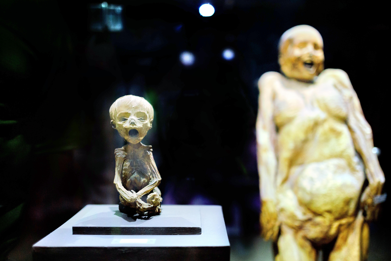 乾屍博物館