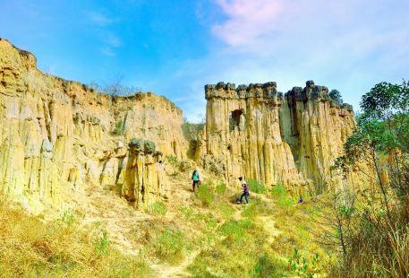Huanglian Soil Forest