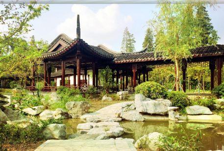 City Green Valley Scenic Area