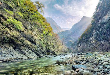 Heihe National Forest Park