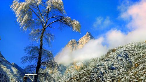 Manshanhua Valley Scenic Area