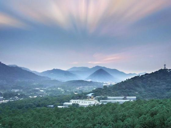 Phoenix Hill of Zhuhai