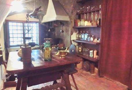Golden Vulture Pharmacy Museum
