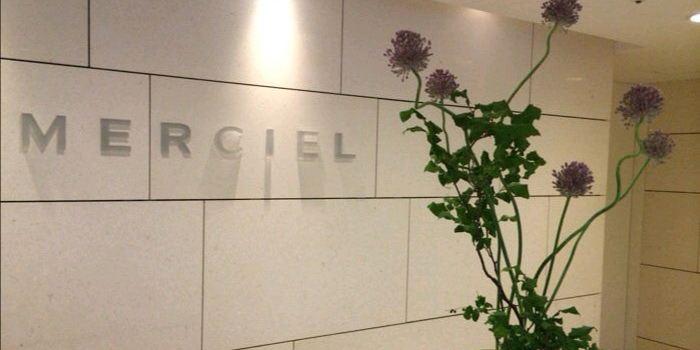 Merciel2