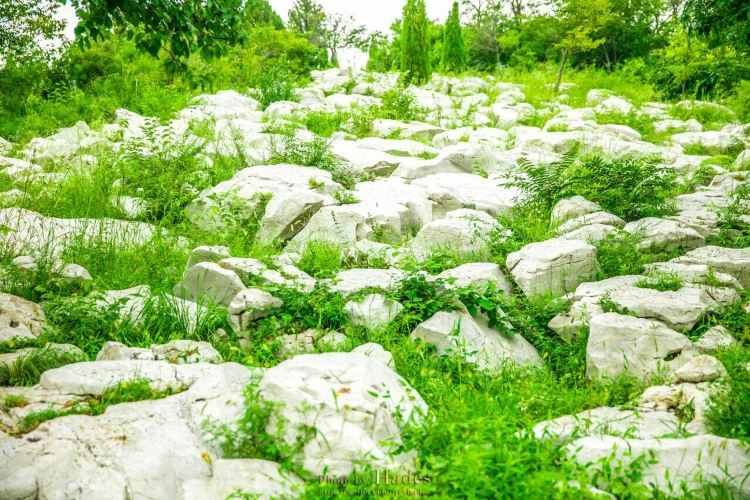 Yuanshan National Forest Park3