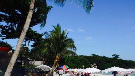 Perfect Dough Beach Bar&Restaurant