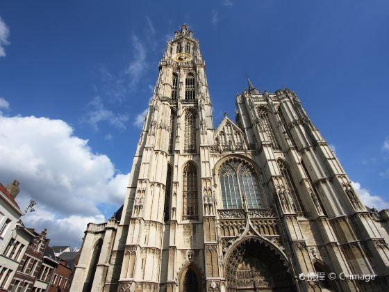 聖母主教座堂