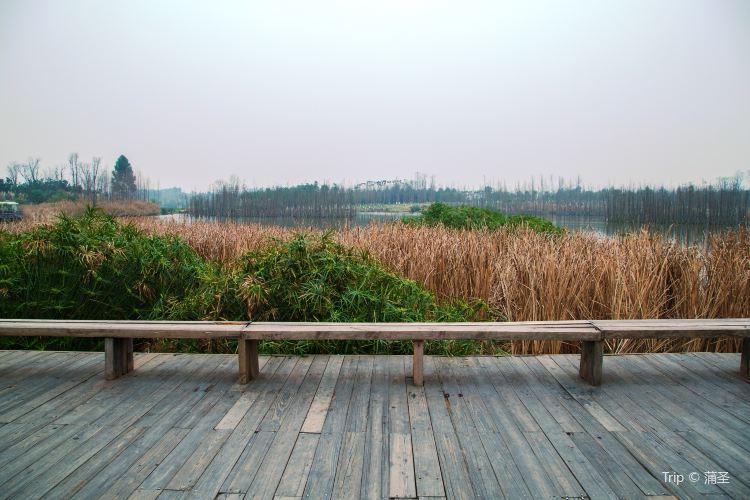 진장 바이루시 생태공원4