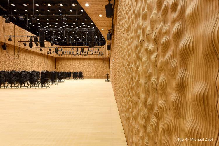 Elbphilharmonie Hamburg4