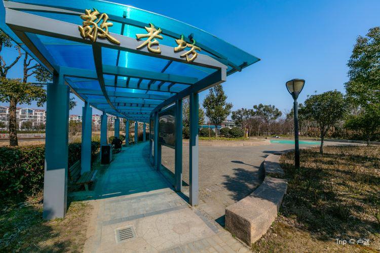 Zhangheng Park1