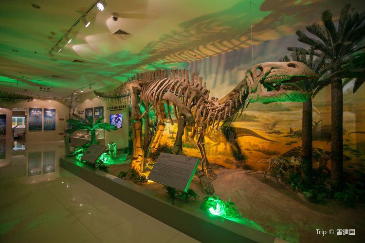 Gansu Geological Museum2