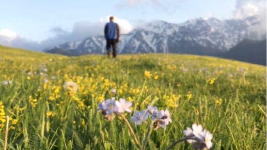 賽裡木湖蒙古包度假山莊