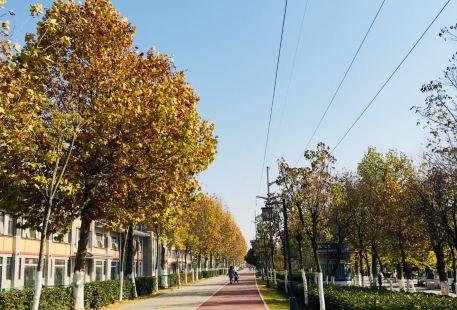 Sanjiaozhou Suzhou Huanle World