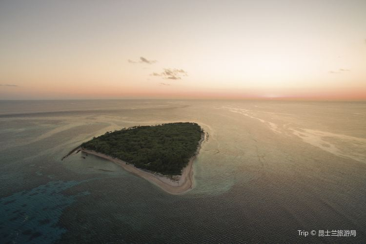 Lady Musgrave Island2