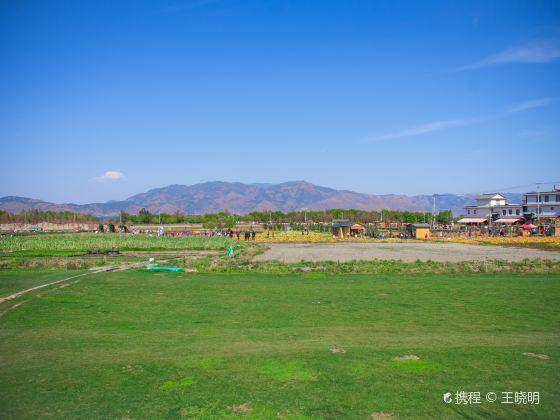 Huayu Ranch