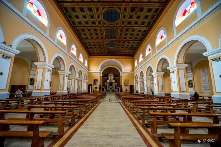 St Stephen's Catholic Cathedral  (Shkoder Cathedral)1