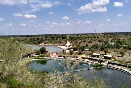 駝鈴夢坡沙漠生態旅遊景區
