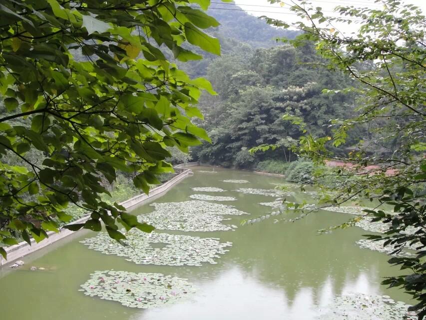 朱家山國家森林公園