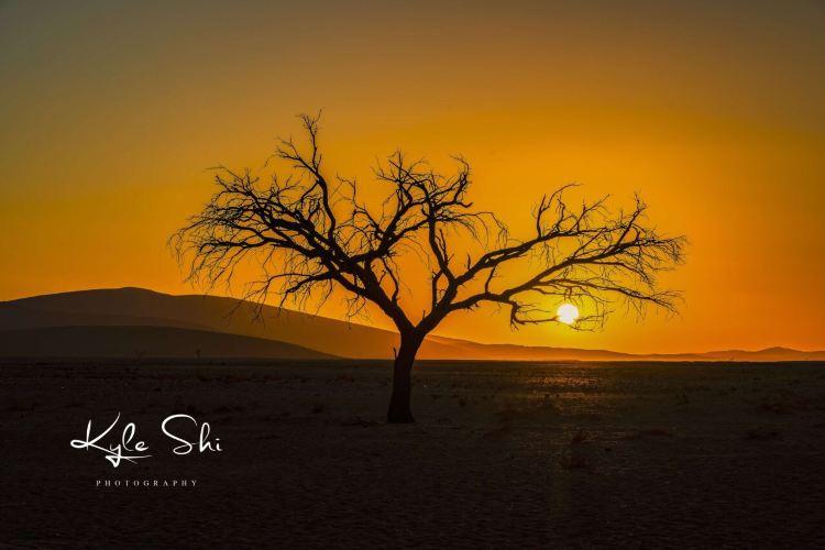Kolmanskop Ghost Town1