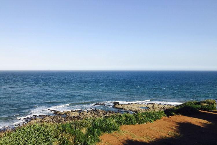 Pearl Bay4